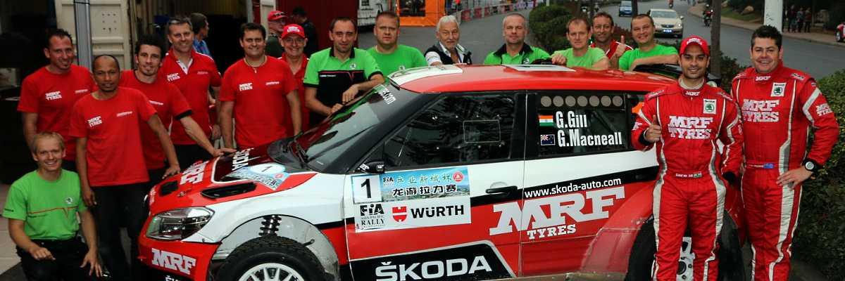 Skoda Team 2013